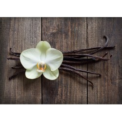 Natural Vanilla - 1.5 lb (~9 qts)